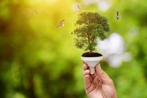 énergie électricité verte