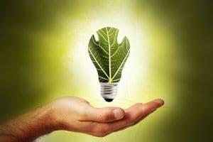offres vertes électricité