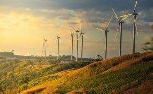 fournisseurs d'électricité verte