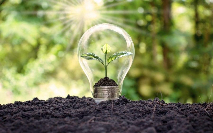 Fournisseur d'électricité verte